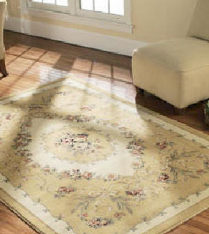 Area Rug Dry Cleaning Host Carpet